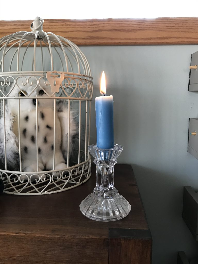 owl and candle